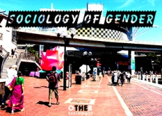 sociology-of-gender